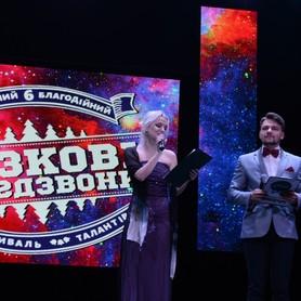 Денис Доля - ведущий в Запорожье - портфолио 4