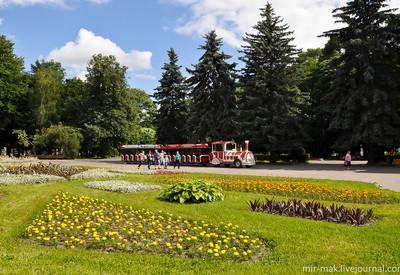 Центральный городской парк  - портфолио 6