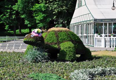 Центральный городской парк - фото 1
