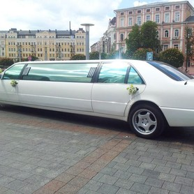 Лимузин Мерседес S 600 - авто на свадьбу в Сумах - портфолио 2