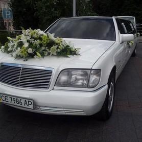 Лимузин Мерседес S 600 - авто на свадьбу в Сумах - портфолио 1