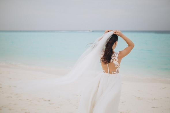 Александр и Татьяна. Мальдивы - фото №1