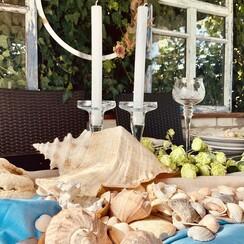 Елизавета  Старосельская - декоратор, флорист в Киеве - фото 2