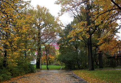 Парк Дубовая роща - фото 3