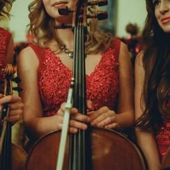 Струнное трио Kohana trio - музыканты, dj в Киеве - фото 3