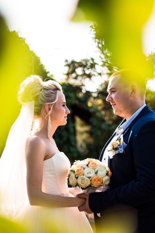 Свадебный отчет 5 - фото №24