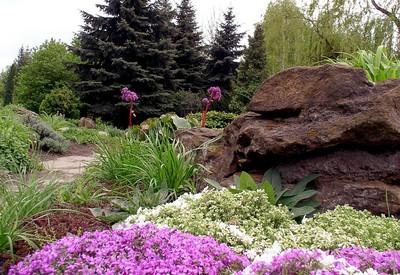 Ботанический сад - фото 3