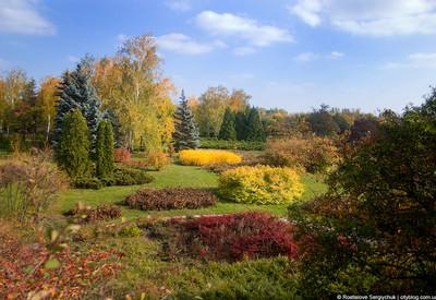 Ботанический сад - фото 1