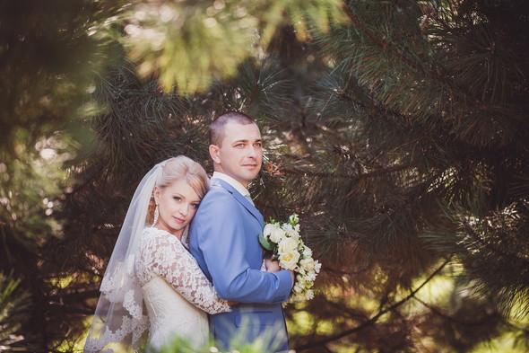 Свадьба Тани и Олега - фото №12
