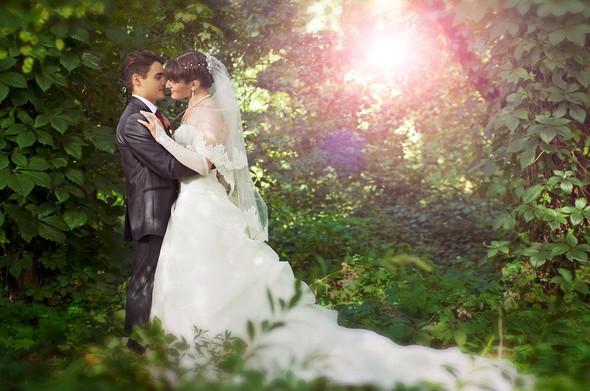 Свадьба Александра и Анастасии - фото №1