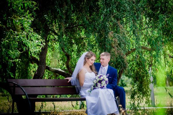Свадьба Александра и Анны - фото №4