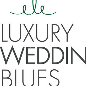 Музыканты, DJ LUXURY WEDDING BLUES